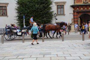 Izlet Dunaj - Bratislava - 317