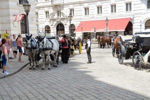 Izlet Dunaj - Bratislava - 329