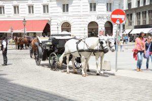 Izlet Dunaj - Bratislava - 330