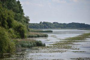 Izlet Madžarska Blatno jezero Mali Balaton 2018 83