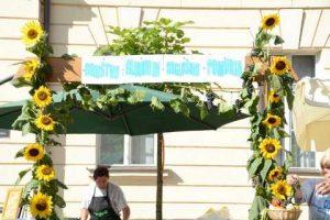 Bogracfest 2015 Lendava - 006