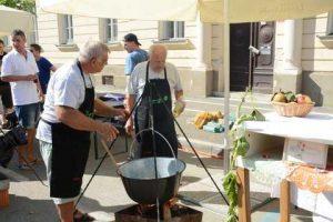 Bogracfest 2015 Lendava - 031