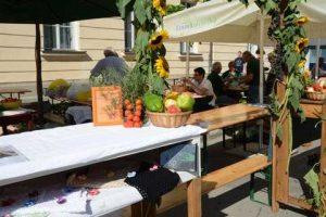 Bogracfest 2015 Lendava - 033