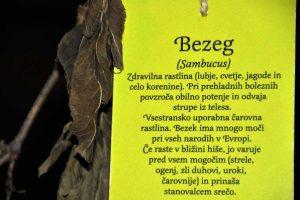 Izlet Ribnica-Kocevje in Olimpijski dan gluhih v Ljubljani - 051
