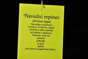 Izlet Ribnica-Kocevje in Olimpijski dan gluhih v Ljubljani - 052