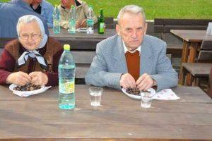 Kostanjev piknik 2011 - 014