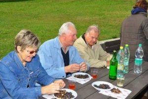 Kostanjev piknik 2011 - 018