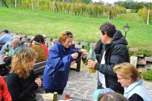 Kostanjev piknik 2011 - 053