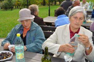 Kostanjev piknik 2011 - 100