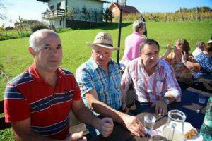 Kostanjev piknik 2014 v Moravskih Toplicah - 192
