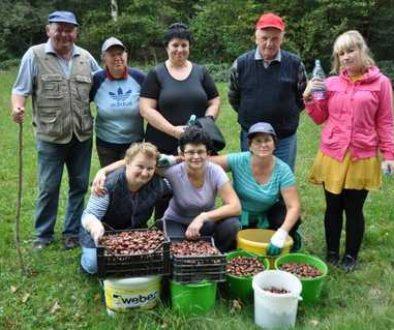 Kostanjev piknik 2015 v Moravskih Toplicah - 001