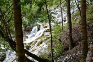 Posocje in Mednarodni dan gluhih v Novi Gorici 2013 - 045