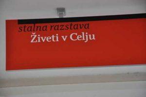 Utrinki z Mednarodnega dneva gluhih Posavje – Krško 2012 - 073